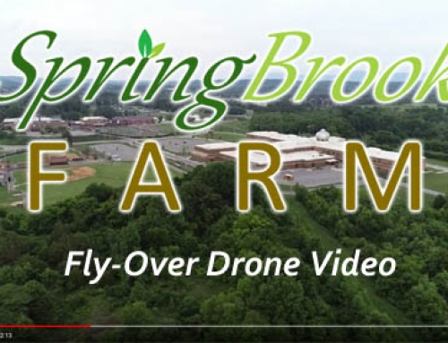 Springbrook Farm Redevelopment Project – Fly-Over Drone Video
