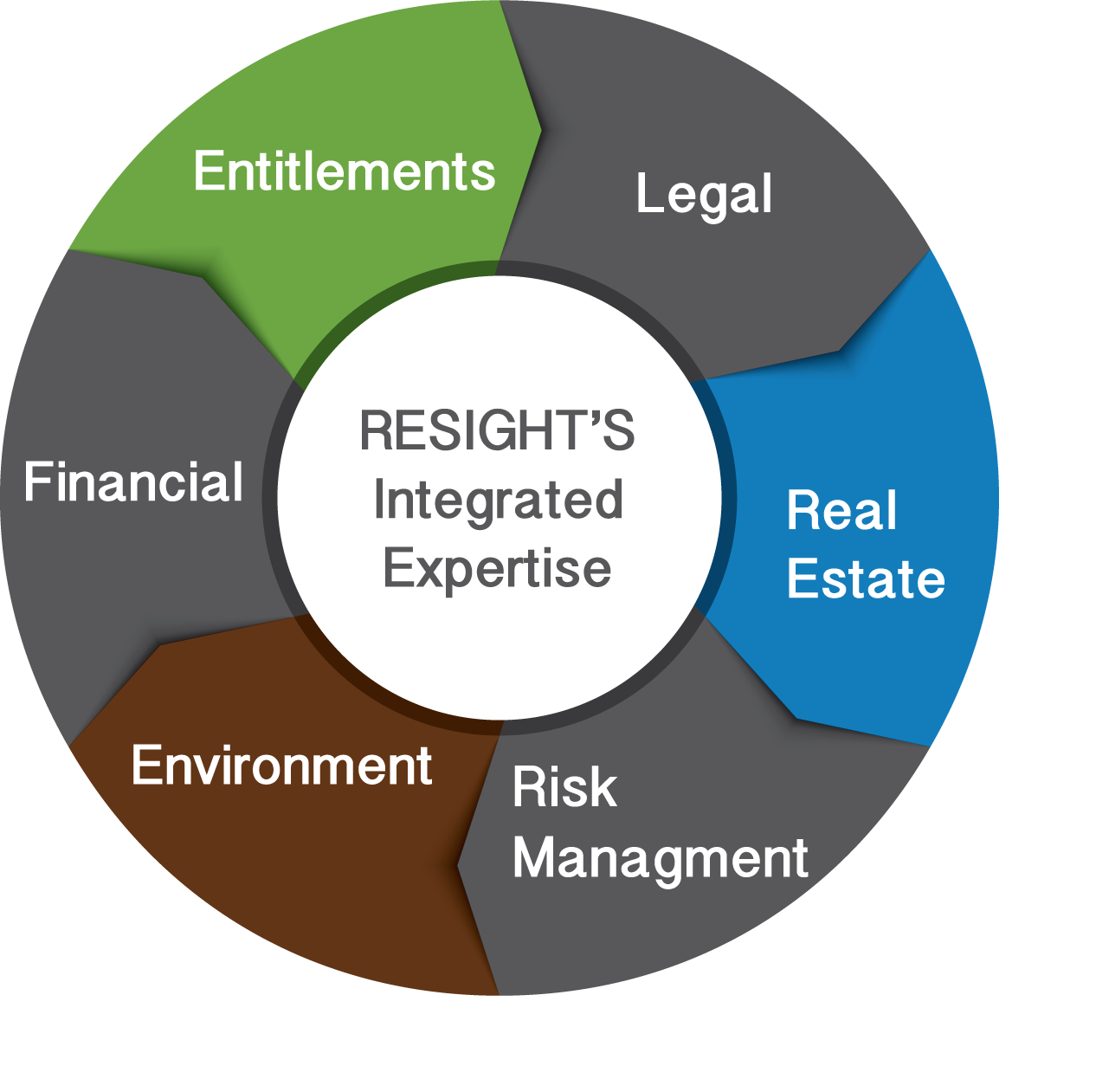 resight-expertise-model